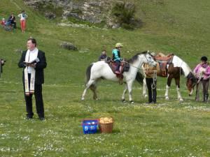Pferdesegnung 04