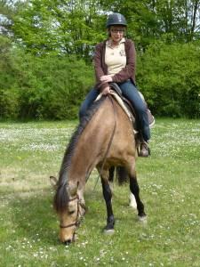 Pferdesegnung 10