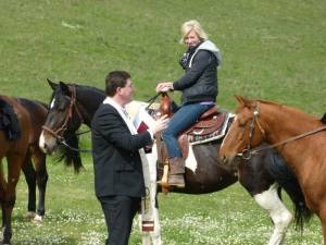Pferdesegnung 12