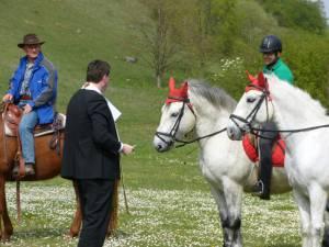 Pferdesegnung 13