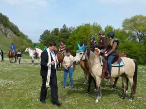 Pferdesegnung 17