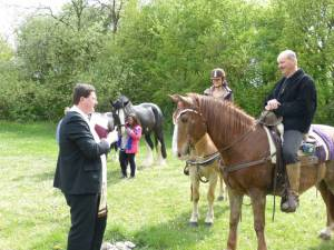 Pferdesegnung 20