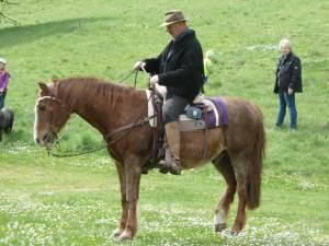 Pferdesegnung 51