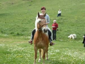 Pferdesegnung 63