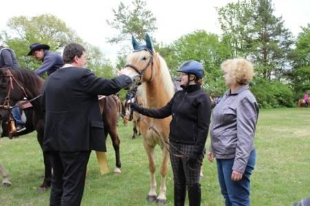 28.04.2019 Pferdesegnung An Den Mauerner  Höhlen (22)