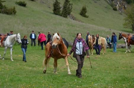 28.04.2019 Pferdesegnung An Den Mauerner  Höhlen (25)