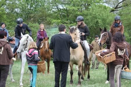 28.04.2019 Pferdesegnung An Den Mauerner  Höhlen (39)