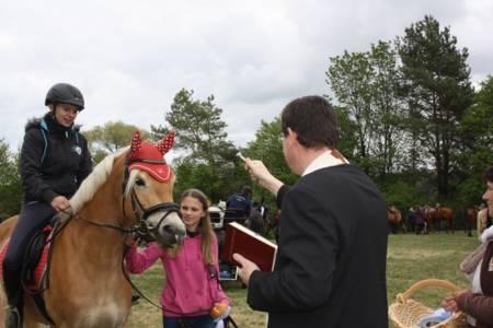 28.04.2019 Pferdesegnung An Den Mauerner  Höhlen (3)