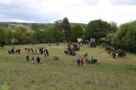 28.04.2019 Pferdesegnung An Den Mauerner  Höhlen (5)