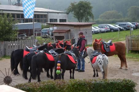 Abzeichenprüfung Der Kids Vom Haflingerhof Am 23.09 (24)