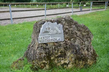 Ausflug Zum Gestüt Wirthsmühle (1)
