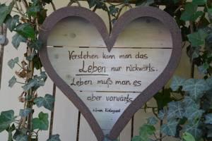 Gestuet Eulenthal Am 13.06 (32)