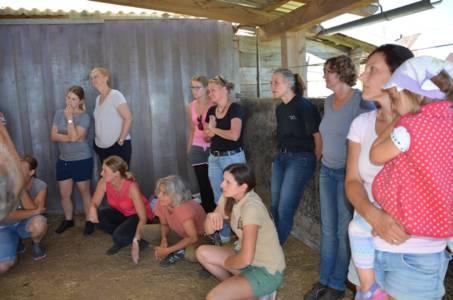 Erste Hilfe Kurs Mit Birgit Wadenstorfer (1)
