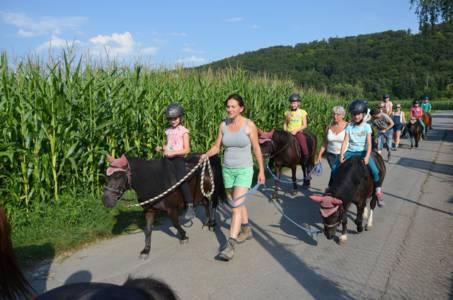 Kids-Zeltlager Der PSG Auf Dem Haflinger Hof In Landershofen (16)