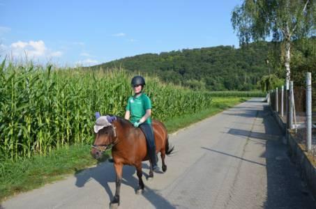 Kids-Zeltlager Der PSG Auf Dem Haflinger Hof In Landershofen (17)