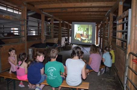 Kids-Zeltlager Der PSG Auf Dem Haflinger Hof In Landershofen (21)