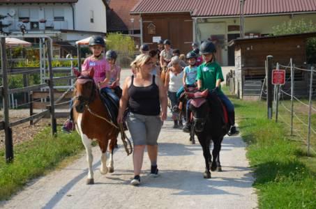 Kids-Zeltlager Der PSG Auf Dem Haflinger Hof In Landershofen (2)