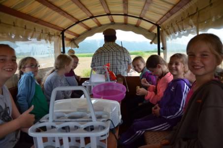 Kids-Zeltlager Der PSG Auf Dem Haflinger Hof In Landershofen (31)