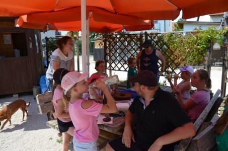 Kids-Zeltlager Der PSG Auf Dem Haflinger Hof In Landershofen (32)