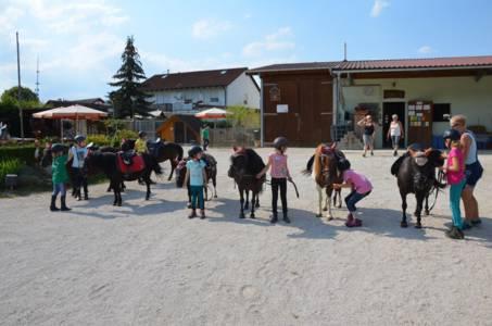 Kids-Zeltlager Der PSG Auf Dem Haflinger Hof In Landershofen (42)