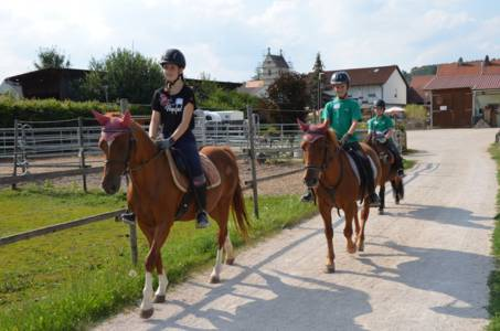 Kids-Zeltlager Der PSG Auf Dem Haflinger Hof In Landershofen (5)