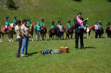 Pferdesegnung 22.05.16  (27)