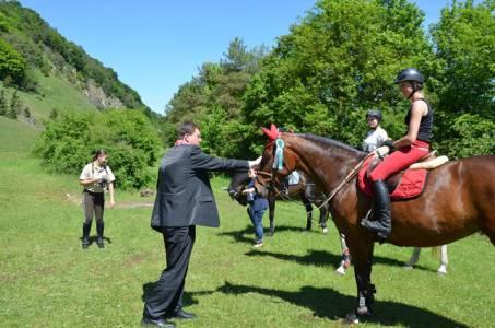 Pferdesegnung 22.05.16  (31)