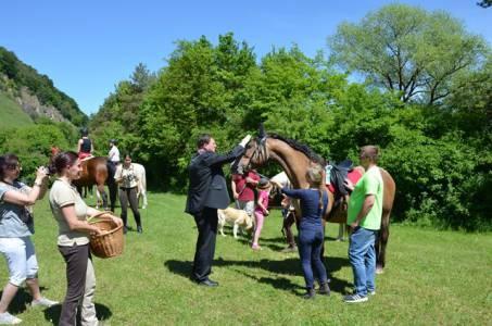 Pferdesegnung 22.05.16  (32)