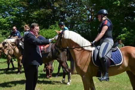 Pferdesegnung 22.05.16  (39)