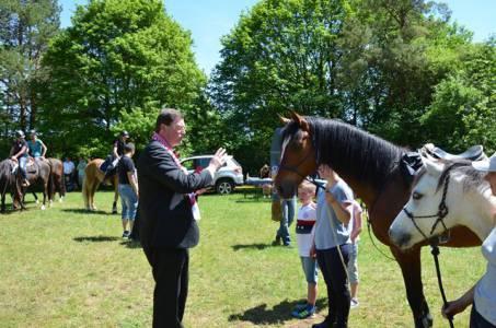 Pferdesegnung 22.05.16  (41)
