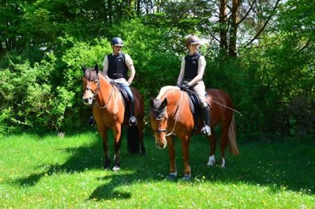 Pferdesegnung Am 29.04 (26)
