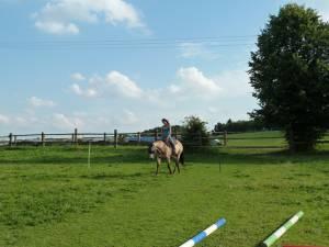 Horsemanship 03
