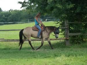 Horsemanship 04