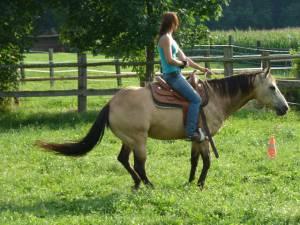 Horsemanship 08