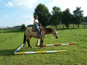 Horsemanship 10