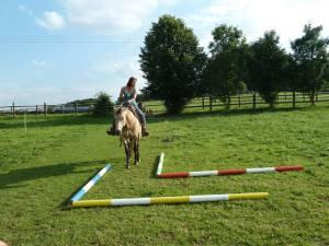 Horsemanship 11