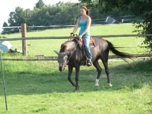 Horsemanship 13