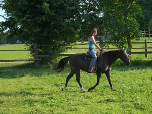 Horsemanship 16