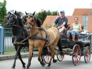 Marxheim 7 2012 10