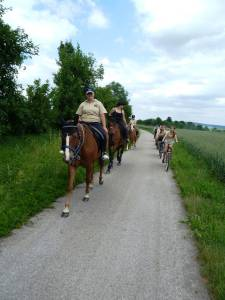 Marxheim 7 2012 11