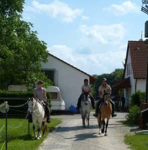 Marxheim 7 2012 16