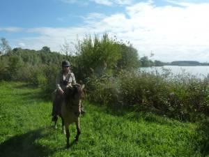 Natterholz 9 2012 08