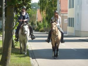 Natterholz 9 2012 12