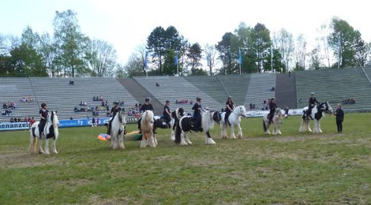 Pferd International 01