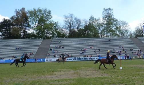 Pferd International 02