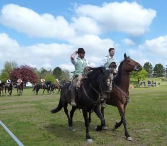 Pferd International 08