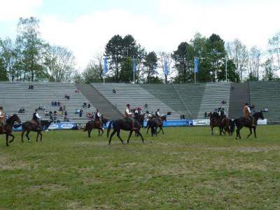 Pferd International 09