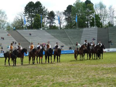 Pferd International 10