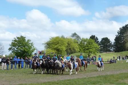 Pferd International 12