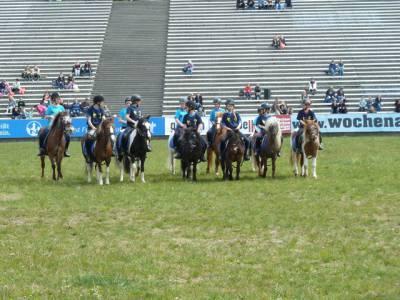 Pferd International 13